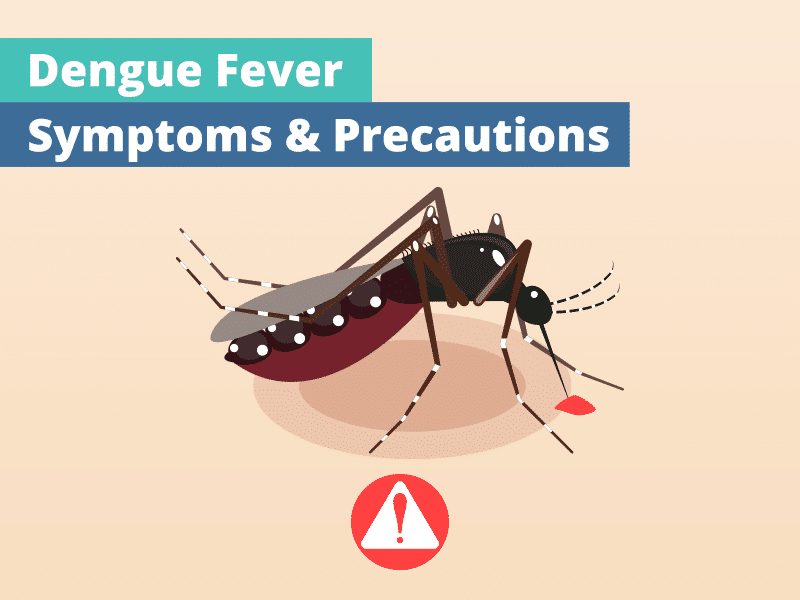 Dengue Symptoms, Causes and Treatment